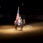 Cowgirl rider on horseback holding American Flag