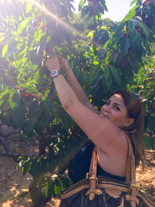 Dima Sharif picking Cherries in Organic Farm